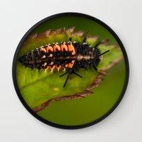 bug Wall Clocks featuring Bug by Wealie