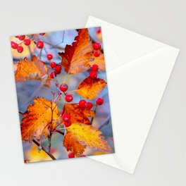 Elegant Hawthorn Berries In Autumn Stationery Cards