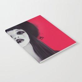Asja Notebook