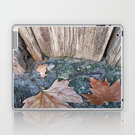 002 Laptop & iPad Skin