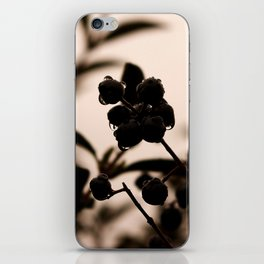 raindrops and hedge berries iPhone Skin
