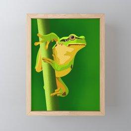 Bullfrog Framed Mini Art Print