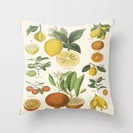 Citrus Fruits Lime Lemons Vintage Scientific Illustration Encyclopedia Labeled Diagrams Throw Pillow