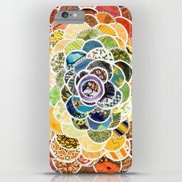 Rainbowbloom iPhone Case