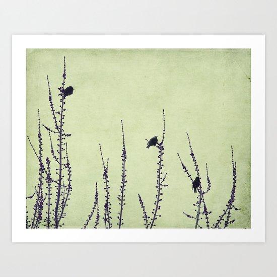 three birdies Art Print