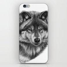 Canis Lupus SK0105 iPhone & iPod Skin