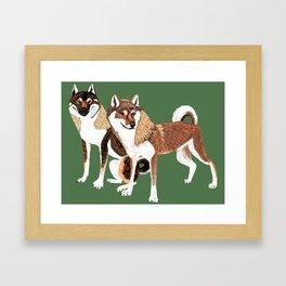Shikoku Inu Framed Art Print