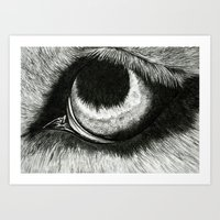 Pencil Drawing - Wolf Eye Art Print