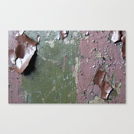 Lead paint anyone? Canvas Print
