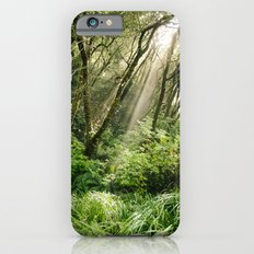 In the Forest iPhone 6s Slim Case