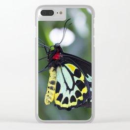 Cairns Birdwing Butterfly Clear iPhone Case
