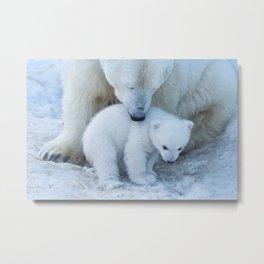 Polar Bear Mother and Cub portrait. Metal Print