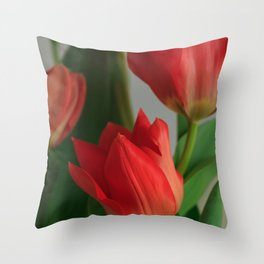 Crimson Red Tulip Flowers at Home Throw Pillow