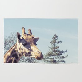 giraffe... Rug