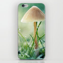 it's a tiny world iPhone Skin
