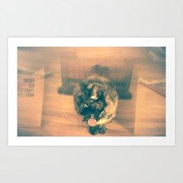 Cat Double Exposure Art Print