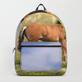 Watercolor Horse 39, Icelandic Pony, Höfn, Iceland, Paused in Curiosity Backpack