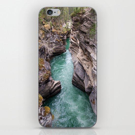 Nature's veins iPhone & iPod Skin