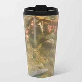 Day 0685 /// Six fishies Travel Mug