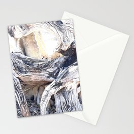 Gnarly Stationery Cards