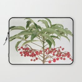 Spice Berry  Laptop Sleeve