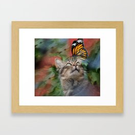Cat playing with butterfly Framed Art Print