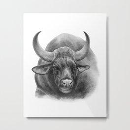 Indian Bison by Magda Opoka Metal Print