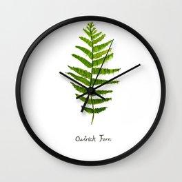 Ostrich fern Wall Clock