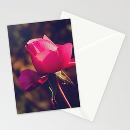 Pink-purple rose, a classic symbol of beauty - Fine Arts Nature Photography Stationery Cards