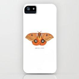 Randa's Eyed Silkmoth (Automeris randa) iPhone Case
