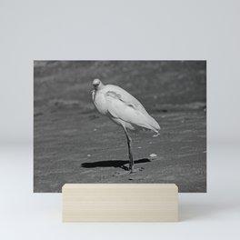 Brightest Quirk Mini Art Print