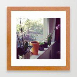 Windowsill Garden  Framed Art Print