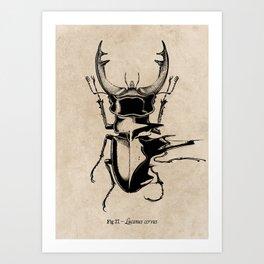 Stag Beetle Glitch Art Print