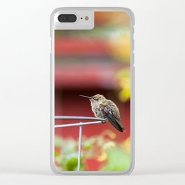 Meal Planning For Hummingbirds Clear iPhone Case