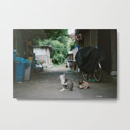 Japanese Alley Cats Metal Print