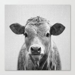 Cow 2 - Black & White Canvas Print
