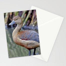 Canard Stationery Cards