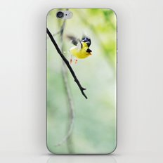 take flight iPhone & iPod Skin