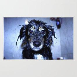 Wet Jamie Rug