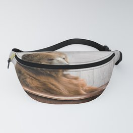 Bear with Rubber Ducky in Vintage Bathtub Fanny Pack