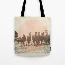 Band of Horses - Peach Tote Bag