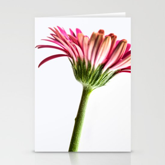 Pink Gerbera 4 Stationery Cards