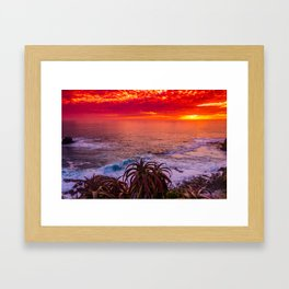 Tropical Punch Framed Art Print