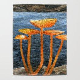 Tangerine Fungi by Teresa Thompson Poster