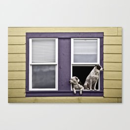 Window Watchers Canvas Print