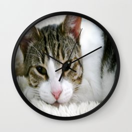 Kloeh the rescued cat Wall Clock