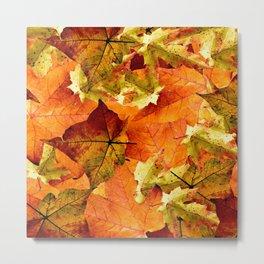 Fallen Autumn Leaves Metal Print