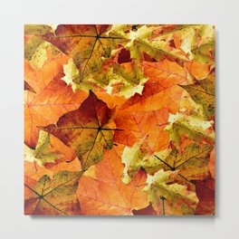 Fallen Autumn Leaves Metal Print