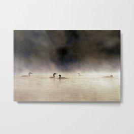loons in the mist Metal Print