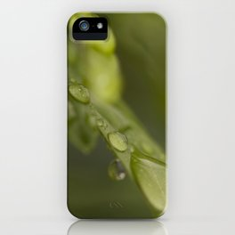 Morning Raindrops iPhone Case